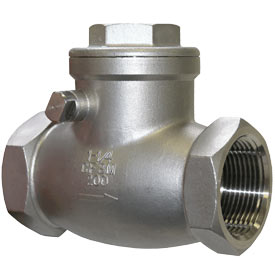 Stainless Steel Swing Check Valve threaded BSP